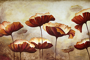Brown Poppies F0002